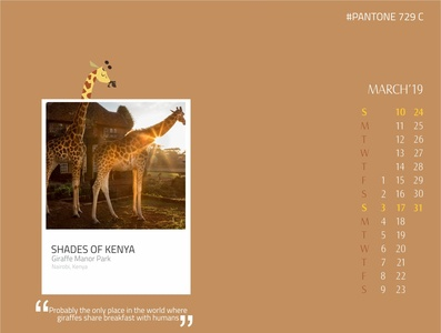 Shades of Kenya - Giraffe Manor Park