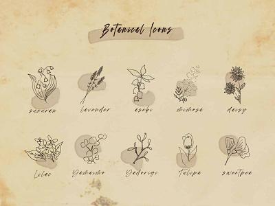 Daily UI #055_Iconset flower antique illustraion botanical web uidesign design dailyui