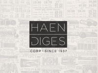 Haendiges Corp Brand Project: Concept 3 - Modern