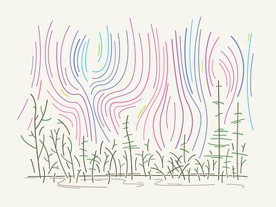 The Shimmer illustration vandermeer jeff area x annihilation shimmer
