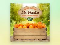 Nutri Nectar Tangerine Label