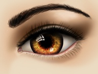 Firely Brown Eyes