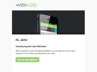Wellvize Set Password Email email