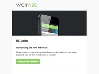 Wellvize Set Password Email