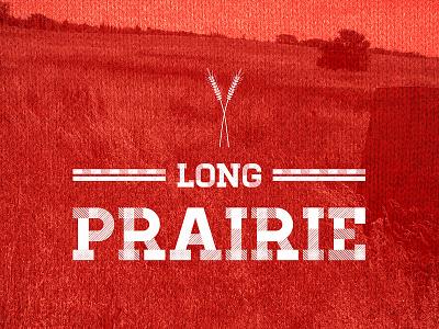 Long Prairie minnesota town city