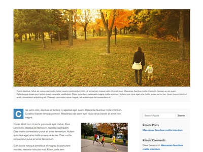 Ripple WordPress Theme - Post wordpress theme post blog