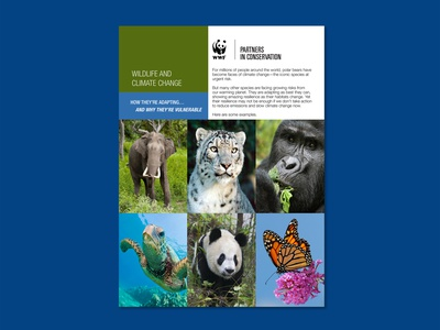 Insert (Tear and Share Cards) for WWF Direct Mailer photoshop non-profit graphic design indesign print