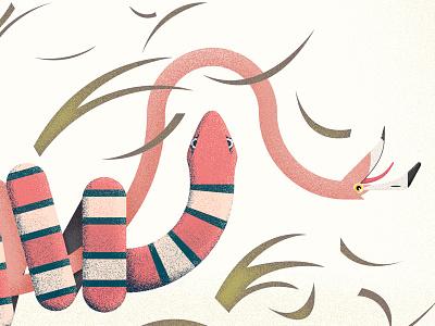 Dying flamingo illustration editorial book flamingo las medias de los flamencos horacio quiroga charley harper wildlife nature birds snake coral