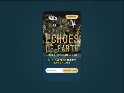 Echoes Of Earth Music Festival Mobile Design