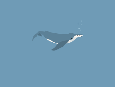 Humpback whale vector sea humpback whale