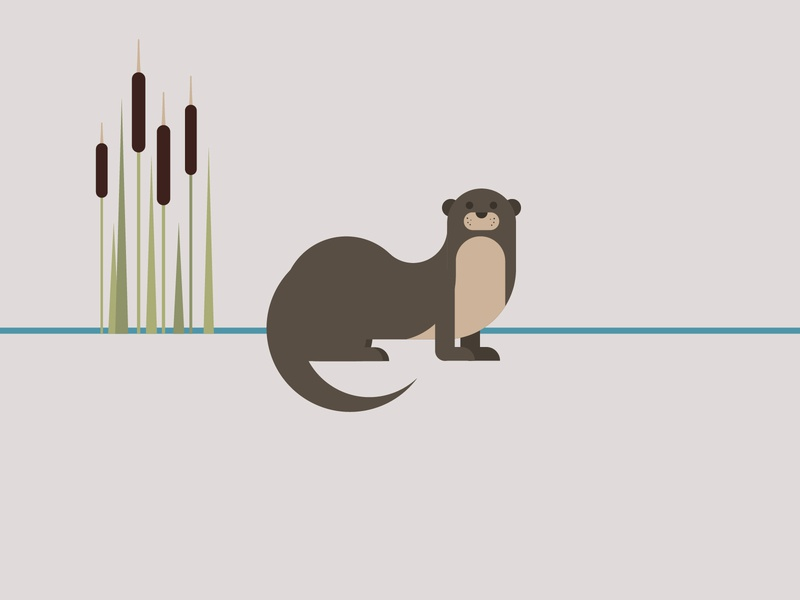 otter simple minimal geometric wildlife art wildlife environment conservation otter animal endangered