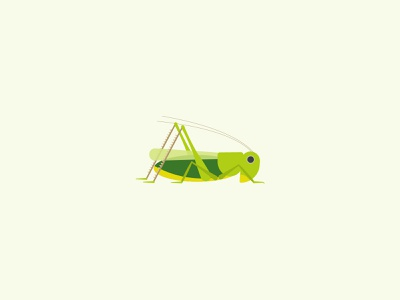 Wart-biter bush cricket geometric simple minimal vector nature conservation childrens illustration wildlife endangered insect cricket