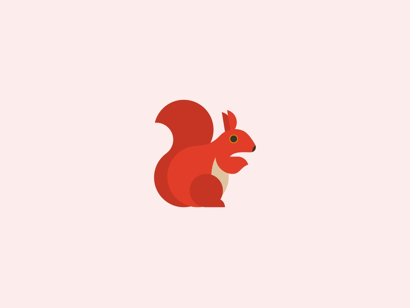 red squirrel animal art vector minimal simple environment red squirrel squirrel wildllife endangered