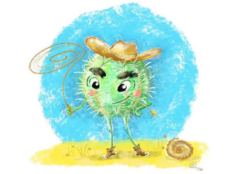 Cactus-cowboy children book illustration children book book illustration cowboy cactus procreate art procreate drawing character character design children illustration art design illustrator illustration
