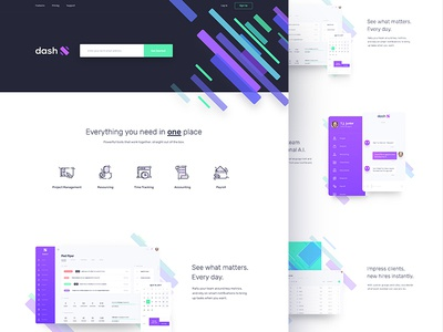 dashX - Marketing Website website homepage time tracking schedule resourcing project management payroll invoice income dashx dashboard accounting