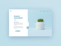 Daily UI Day 012