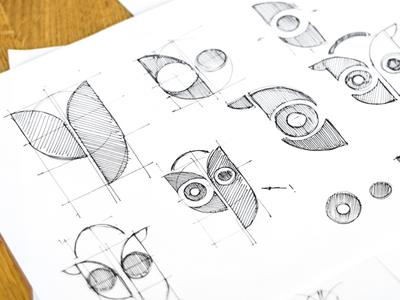 Owl Development Sketches