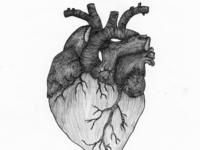 Heart (2016)