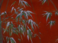 bamboo and red wall