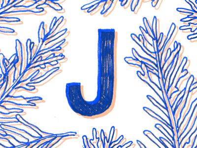 Juniper J