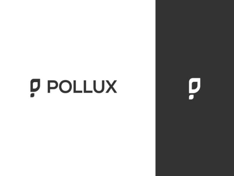 Pollux logo vector typograpgy type minimal logo identity icon flat design clean branding