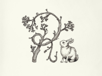 Branch And Bunny