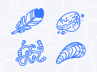 Beach Finds plant shell rock feather beach 🌴 illustrations icons vector