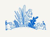 Build Concept: Garden plants texture pattern nature garden build sketch hand-drawn illustration