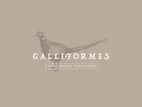 Galliformes / Branding