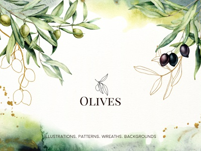 Olives. Watercolor collection greenery foliage wedding cards logo branding arrangement branch mediterranean olive oil greeting botanical texture background gold floral olives watercolor olives olive