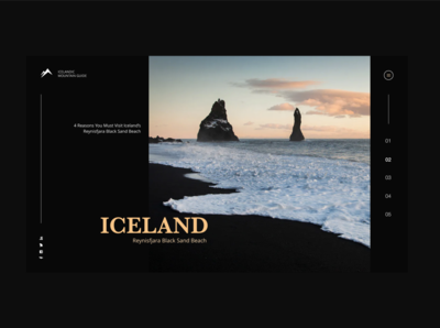 Black Beaches of Iceland