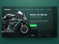 Kawasaki motorcycle web site design