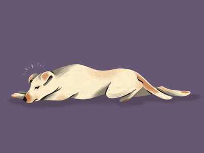 Nova animals procreate texture dog illustration