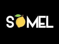 Temporary brand logo