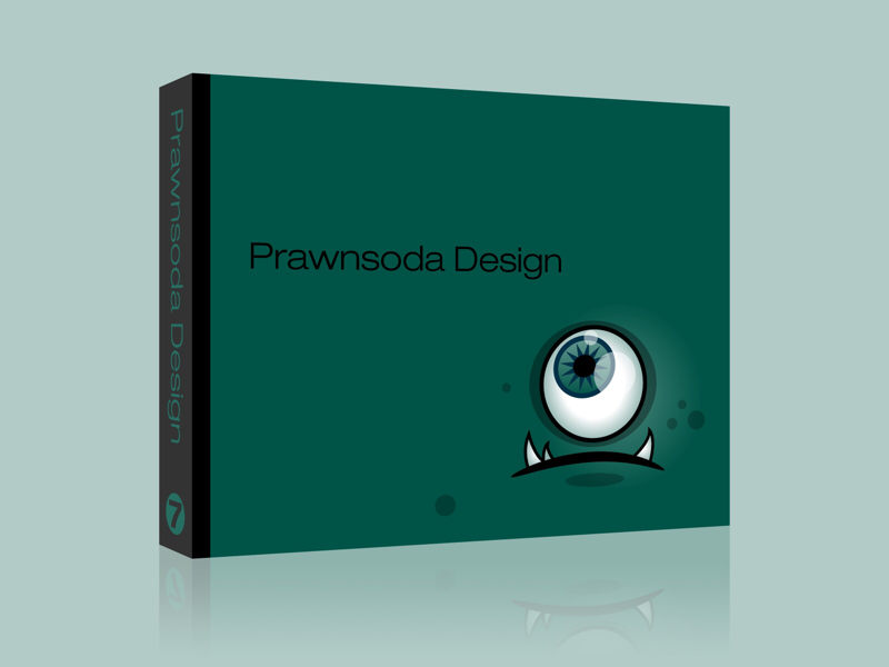 Prawnsoda Book portfolio book illustration design