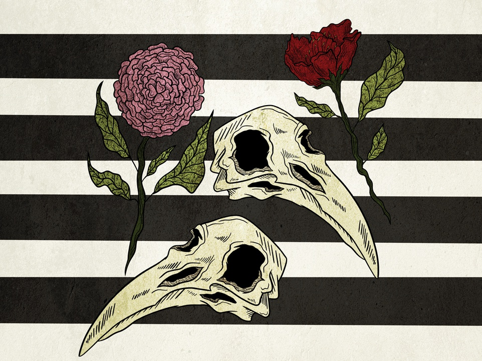Raven and Roses by Carrie Cosmos on Dribbble