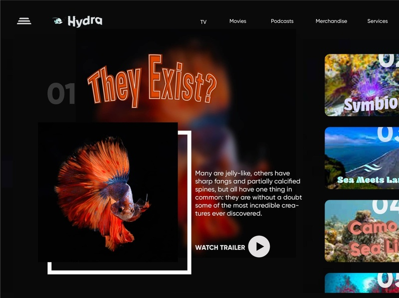 Website - Hydra Channel graphic design uxdesign website design