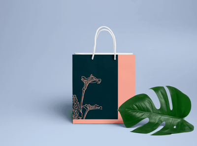 Branding - Sustainable Bags paper bags illustration graphic design