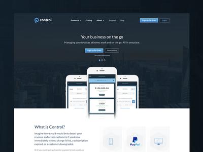Marketing Page blue branding design page landing marketing