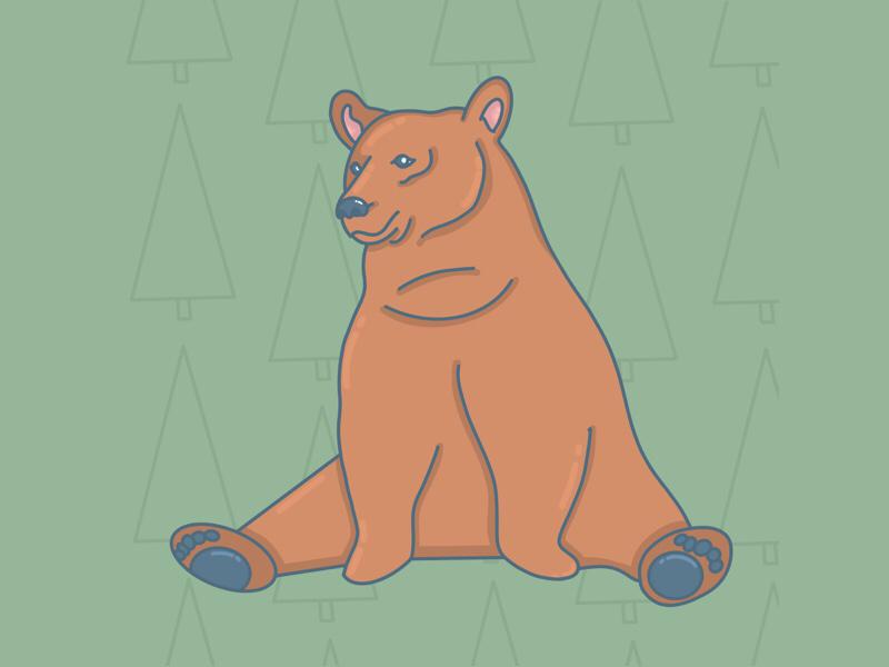 Bear animal digitalart sitting procreate bear