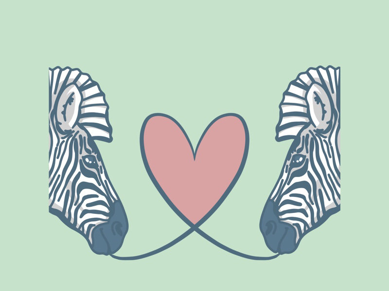 Zebras digitalart procreate love zebra illustration heart wildlife