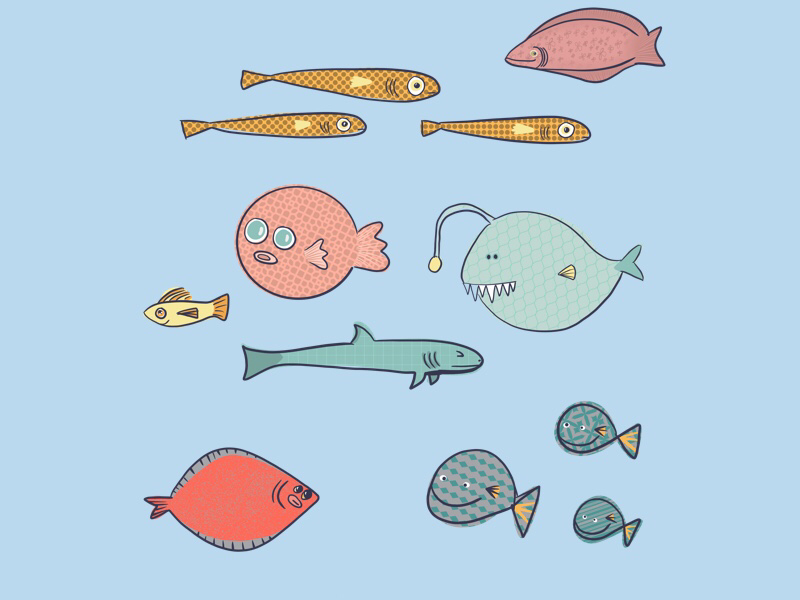 Fun fish design kids digital art ipad illustration procreate ocean fish