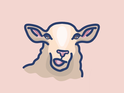 Sheep illustration pink digitalart procreate sheep