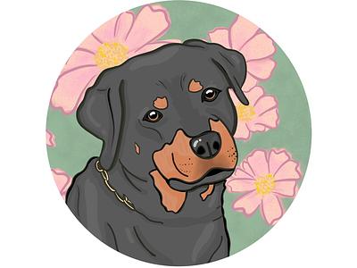 Rottweiler procreate illustration flowers pets dog rottweiler dogs
