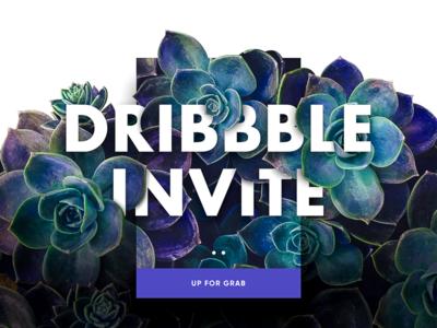 Two Dribbble Invite debut welcome dribbble invite