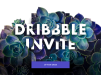 Two Dribbble Invite