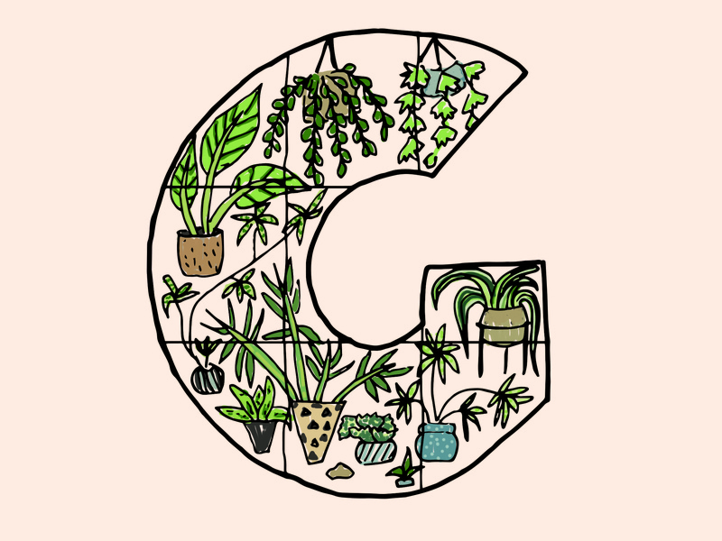 Letter G logo design jungle greenhouse plants art letter design logotype icon type letter g 36 days of type drawing graphic design typography lettering illustration