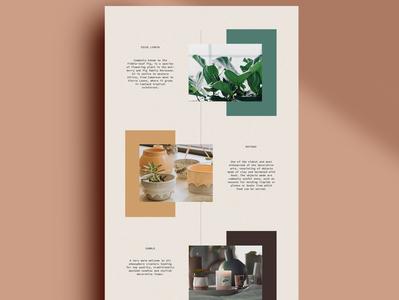 part of a website branding layout design website web weddesign
