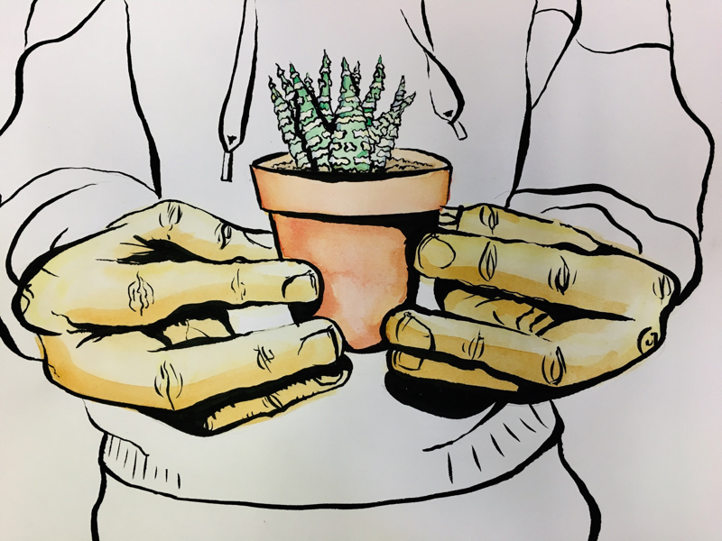 Succulent By Caleb Slagle On Dribbble
