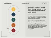 Herb & Olive Color Story
